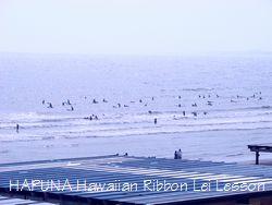 海にはアシカ・・・ではなくサーファー
